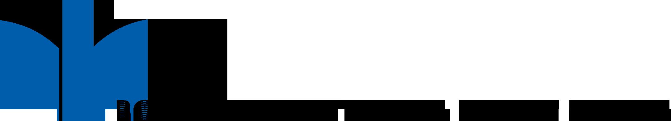 BSV-4-CMYK